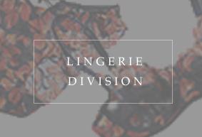 btn_lingerie